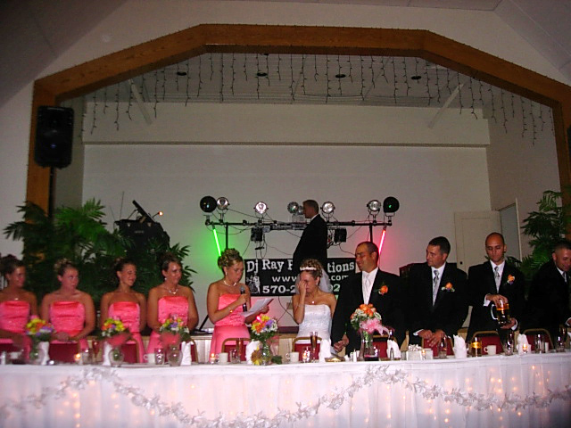 wedding recption djs disc jockeys pa