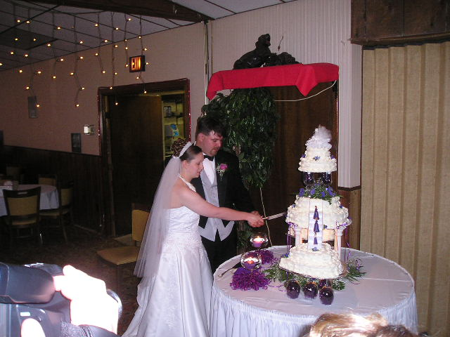 robins-wedding-wedding pictures